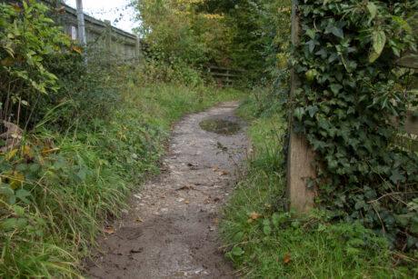 Follifoot path